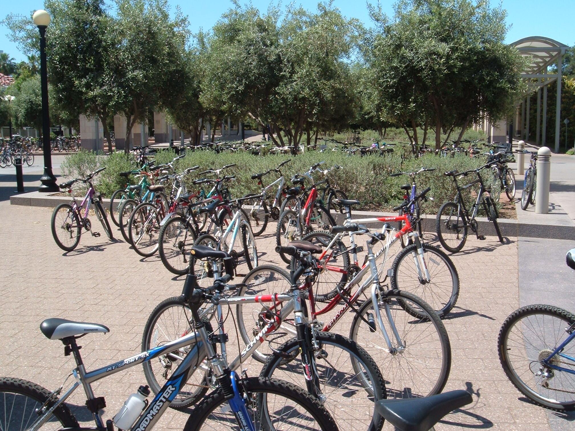 Stanford-bikes